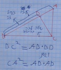 הניצב הוא ממוצע הנדסי של היתר והיטל ניצב זה על היתר (משפט 104 )