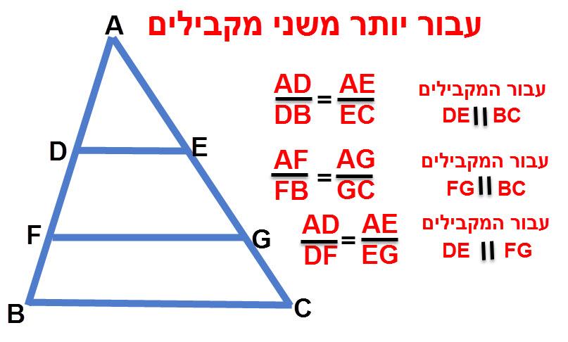 כאשר יש יותר משני קווים מקבילים אנו בוחרים זוג קווים מקבילים ויוצרים משוואה על פי משפט תאלס: