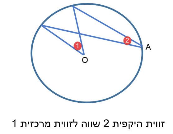במעגל ,זווית היקפית שווה למחצית הזווית המרכזית הנשענת על אותה הקשת.