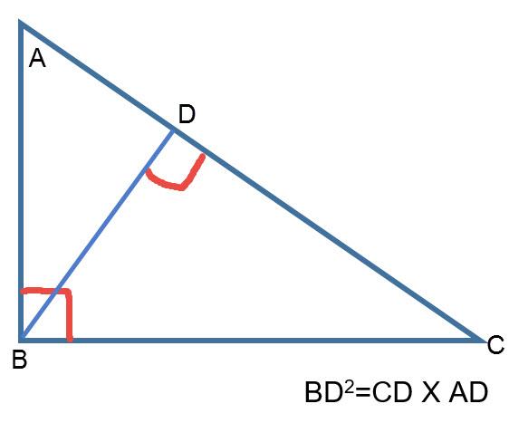 הגובה ליתר במשולש ישר זווית הוא ממוצע הנדסי של היטלי הניצבים על היתר.