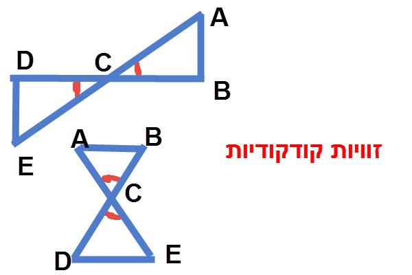 בחלק מהשאלות יש זוויות קודקודיות שוות ACB = DCE