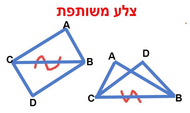 צלע BC משותפת למשולש ABC ומשולש DBC