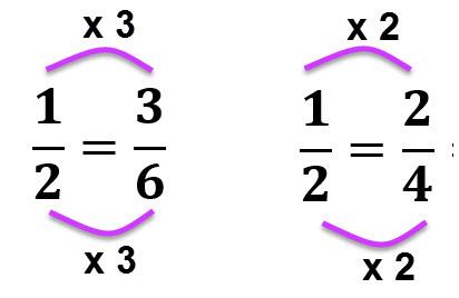 הכפלנו את המונה והמכנה של 1/2 פי 2 על מנת להגיע ל 2/4. והכפלנו את המונה והמכנה של 1/2 פי 3 על מנת להגיע ל 3/6.