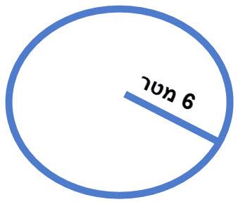 מעגל שרדיוסו הוא 6 מטר