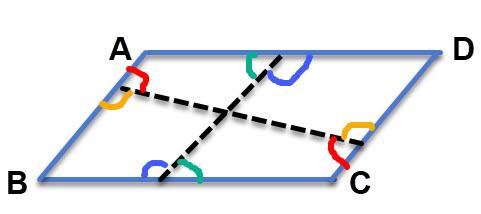 כל זוג צבעים אלו הן זוויות מתחלפות שוות. סך הכל יש כאן 4 זוגות של זוויות מתחלפות שוות.