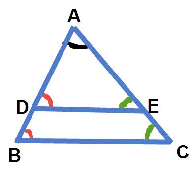 אם BC מקביל ל- DE אז הזוויות הירוקות הן מתאימות שוות. הזוויות האדומות הן מתאימות שוות. זווית A משותפת לשני המשולשים